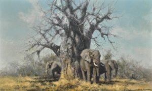 David Shepherd's Under the Baobab