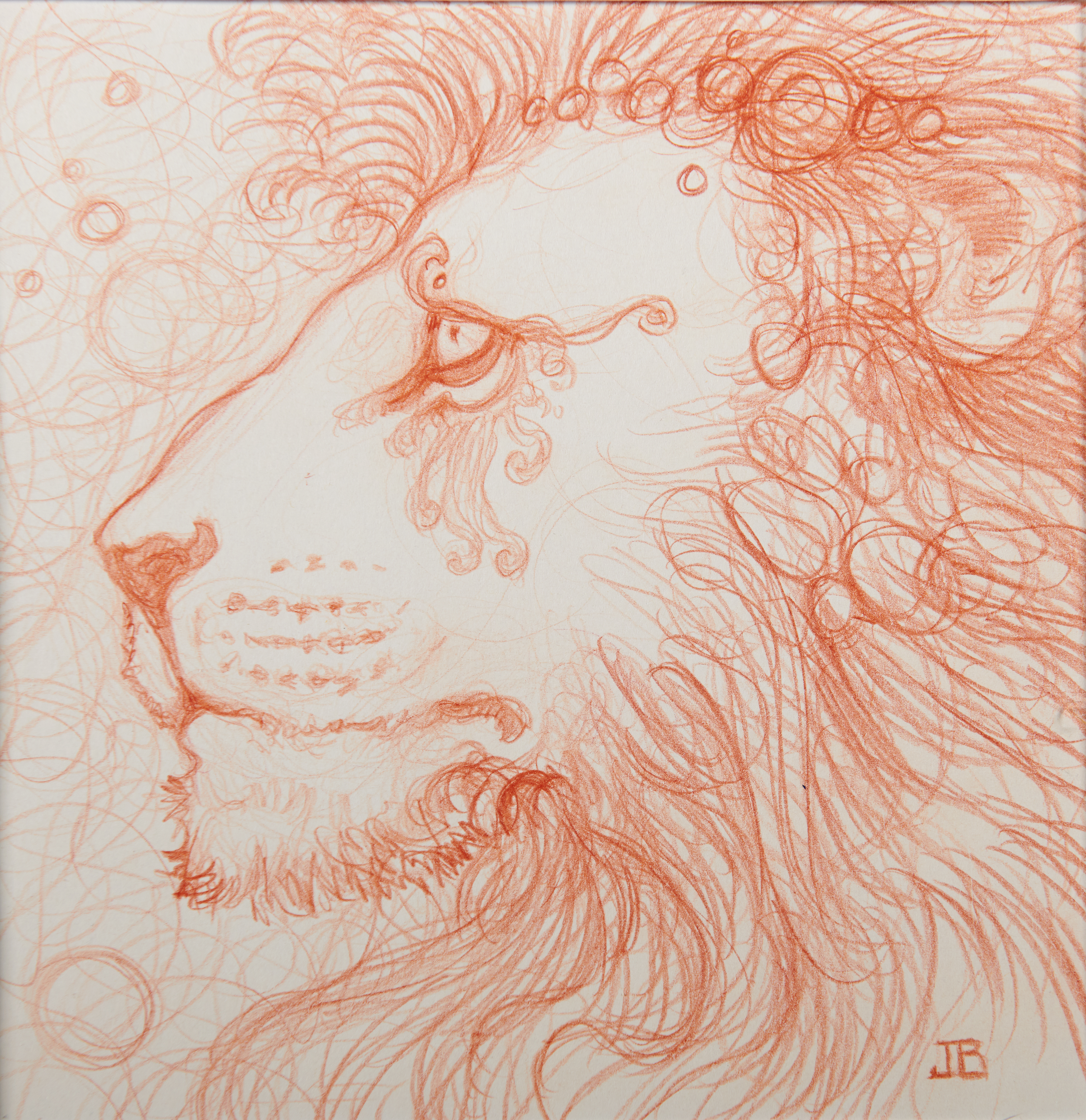 Lion Nebula Study