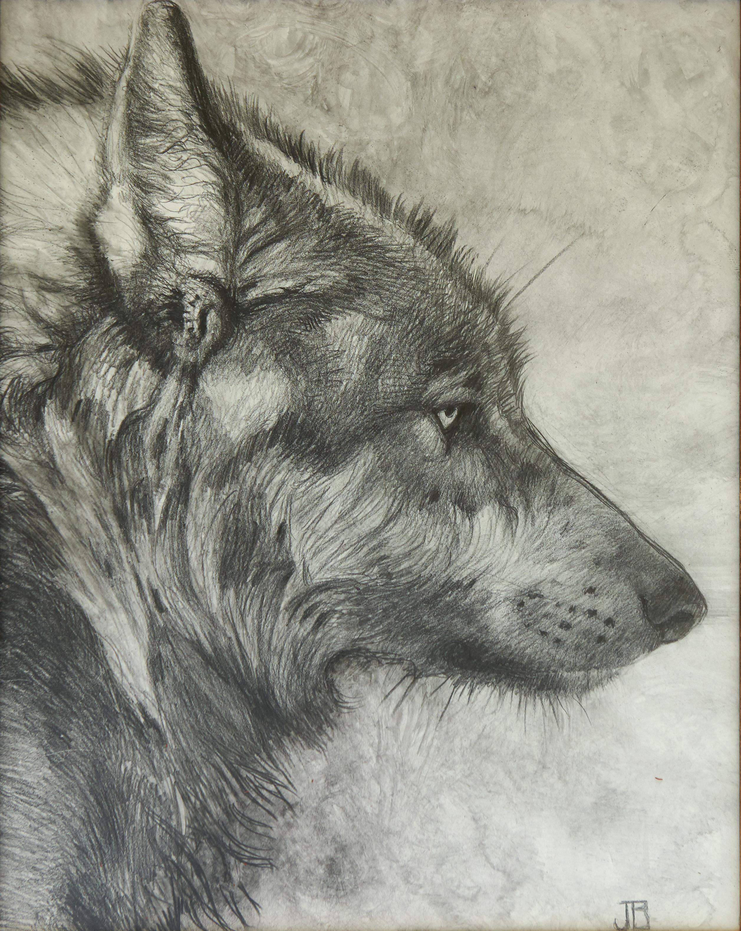 Smoky Wolf