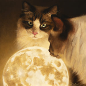 two cats and a planet