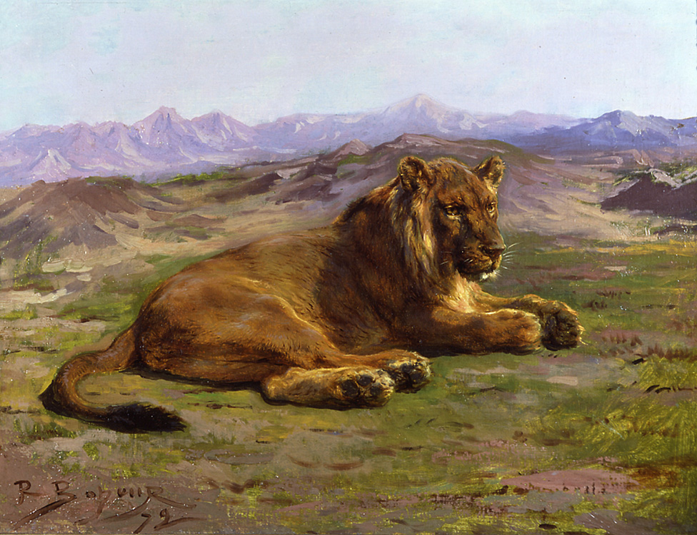 Couching Lion by Rosa Bonheur - 18 x 24 inches Signed and dated '72 french animals